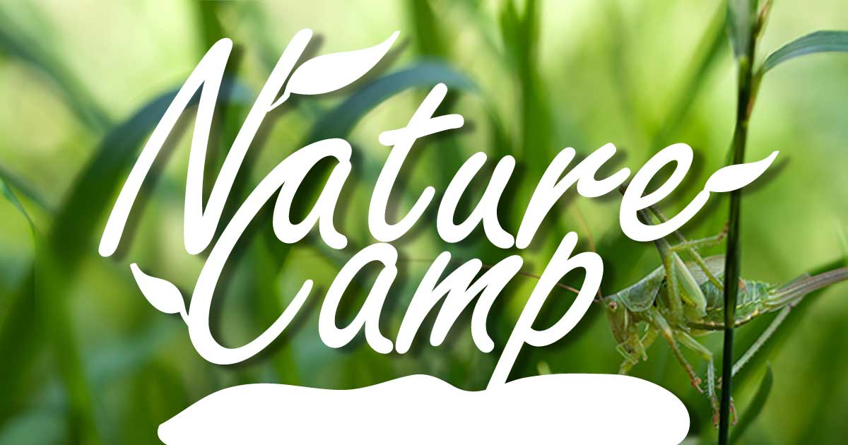 Registration Opens for LibraryFarm Nature Camp