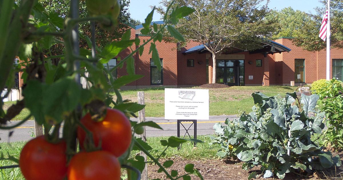 Library Farm